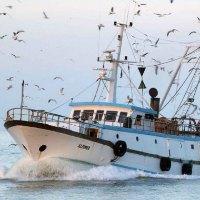 lavorare pescherecci