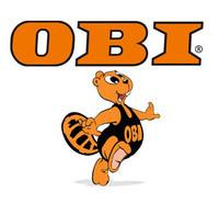 offerte lavoro obi 2016