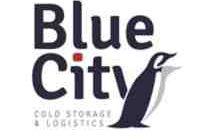 blue city lavis assunzioni